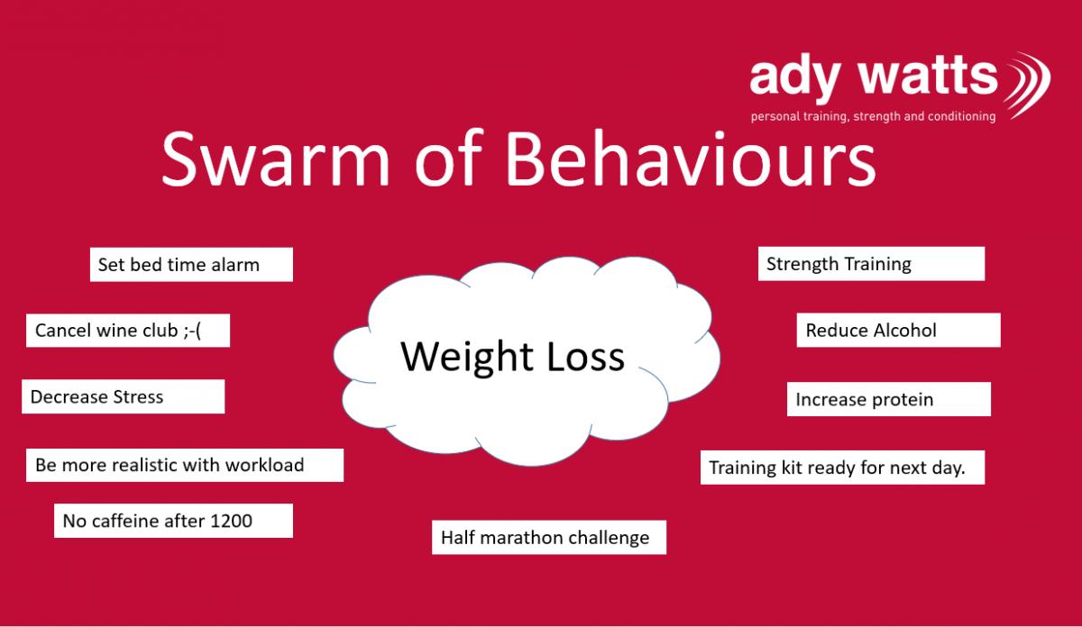 Swarm of Behaviours